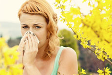 Springtime Allergies Tough on Your Household? Get Them Under Control
